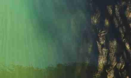 En el hermoso Danubio azul