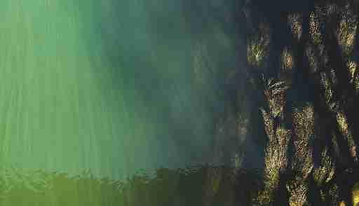 No belo Danúbio azul
